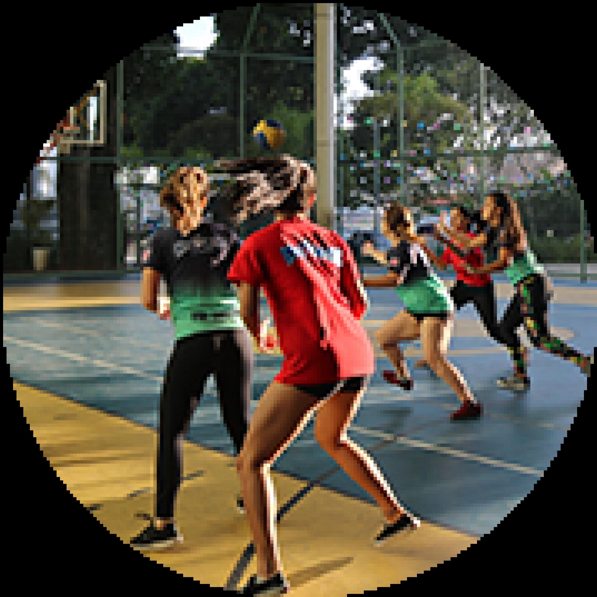 Voleibol, Handebol, Futsal e Basquetebol